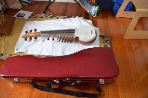 Sarod for sale