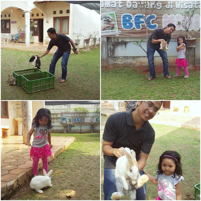 BFC Mini Farm : Tangkap Kelinci