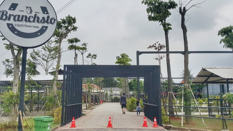 entrance branchsto