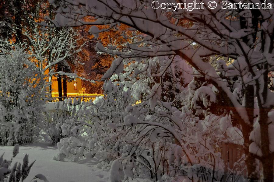 Landscape at Winter Moonlight Dec31 2009