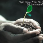 Empezando la semana 41 con alegría : Tierra