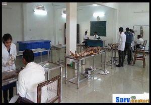 govt medical college rajnandgaon