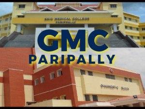 GMC_PARIPALLY