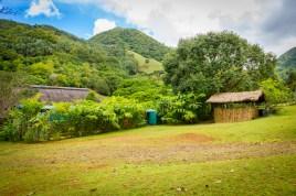 The lush greenery of Ferney Valley, Mauritius. 2014 © Sarwan