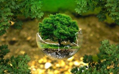 Une solution de chauffage hybride pour un chauffage écologique