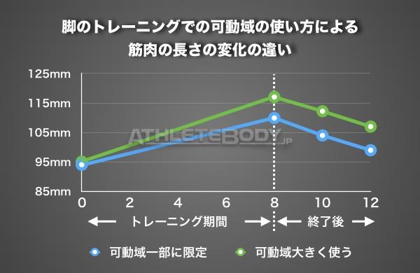 %e7%ad%8b%e9%95%b7%e3%81%ae%e5%a4%89%e5%8c%96
