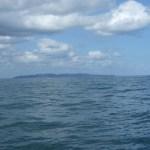 粟島とウミネコ~笹川流れ