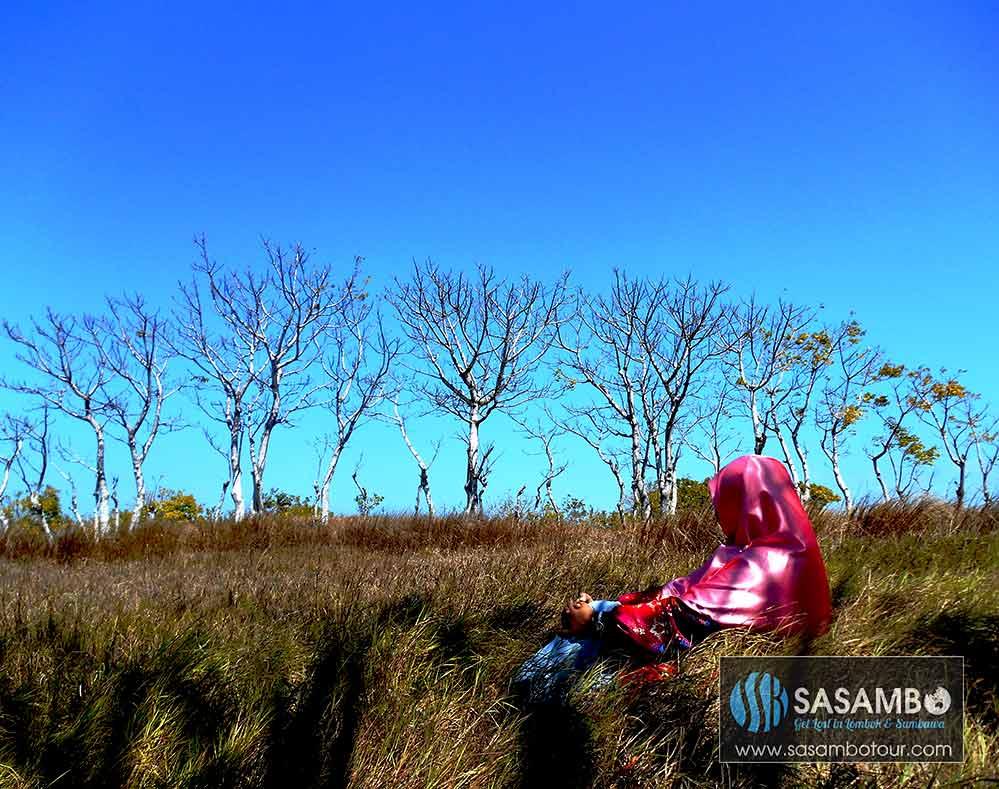 savanna-gili-sunut-lombok