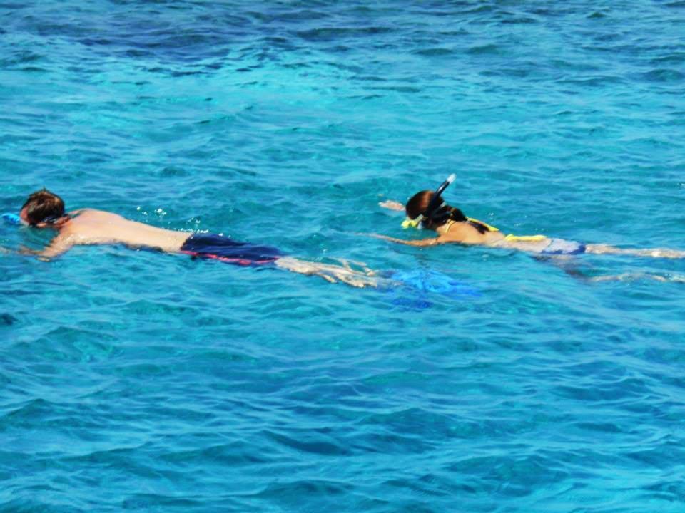 Snorkling Diving Pulau Moyo