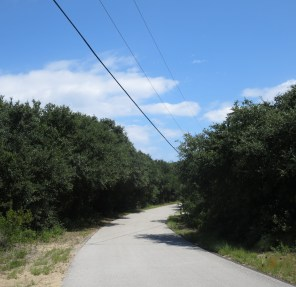 road-to-the-beach