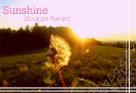 sunshine-bogger-award