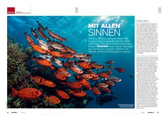 "My post in DIVING 04 / 2018 ""With all your senses"" about diving in Egypt."