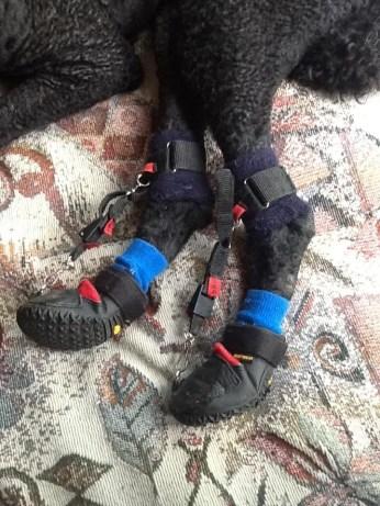 Rufi's Boot