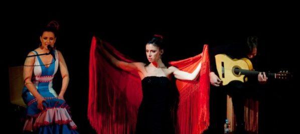 flamenco-670x300
