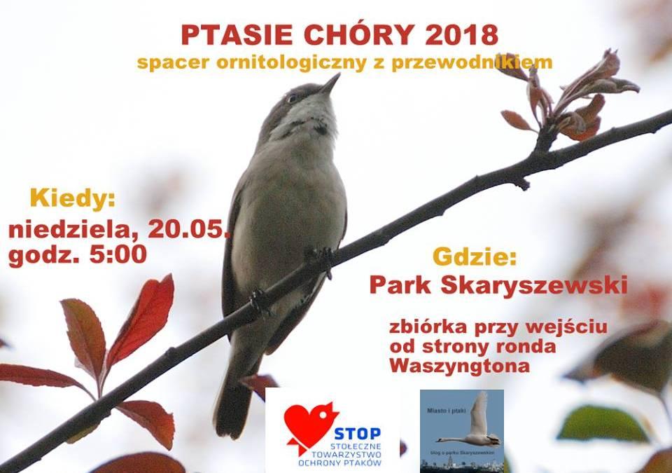 2018-05-20: Ptasie Chóry 2018 – spacer ornitologiczny z przewodnikiem