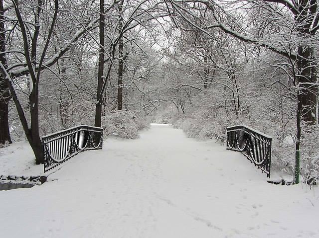 2019-01-13: Uroki Skaryszaka zimową porą