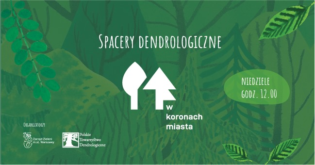 2021-09-19: Spacer dendrologiczny #wKoronachMiasta