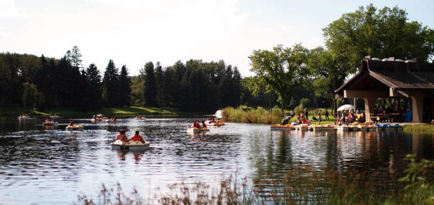 Mapping Swimmer's Itch Across Alberta