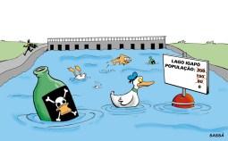 25/02/2000 - Continua a mortandade de patos no lago igapó.