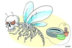 21/03/2002 - Cidade em alerta por causa da dengue.