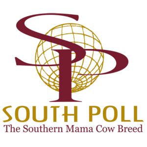 Sassafras Valley Ranch | South Poll Grass Cattle Association