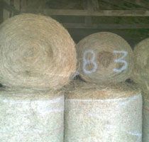 Sassafras Valley Ranch | Profit Tip - Keep an Accurate Bale Count
