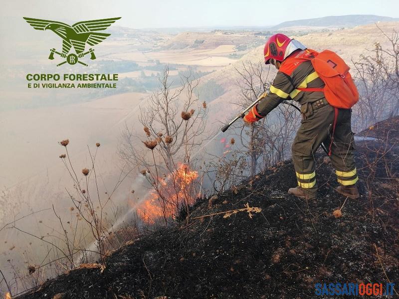Incendio nelle campagne di Ozieri, sul posto l'elicottero per spegnere le fiamme