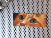 Shopify-Cat-Magnet-1-800x60