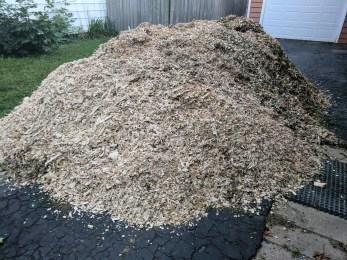 Pile of free mulch