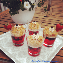 Red, White, and Berry Pretzel Jello Cups from Sassy Southern Yankee
