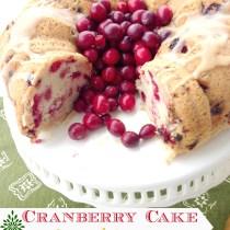 Cranberry Cake with Caramel Sauce 5