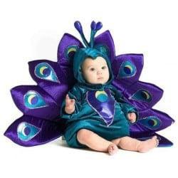 Baby Peacock Halloween Costume