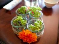 How To Make A Wayfair Inspired Creston Glass Decorative Bottle