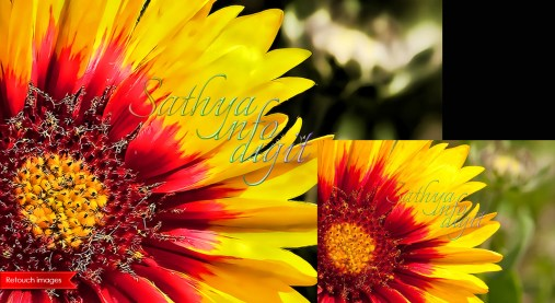 «Sathya Retouch 088