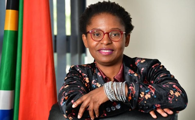 The minister is now urging Clicks to remove TRESemme products from its shelves as an expression of its disassociation with suppliers who promote racist and insensitivity marketing.
