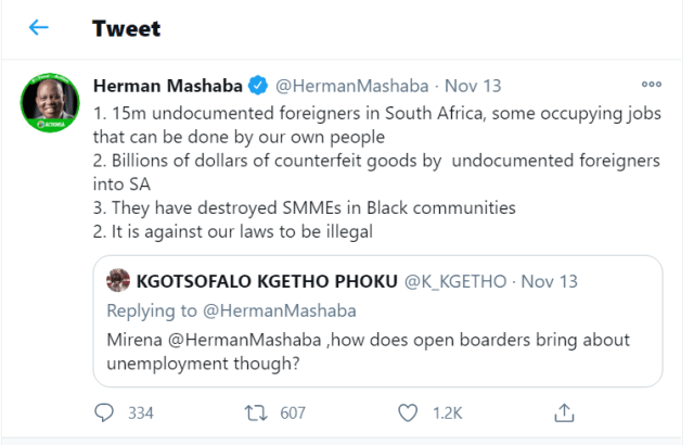 Herman Mashaba,Are there really 15 million 'undocumented foreigners' in South Africa?