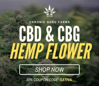 CBD FLOWER BUY