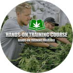 Hands on Marijuana Training Course