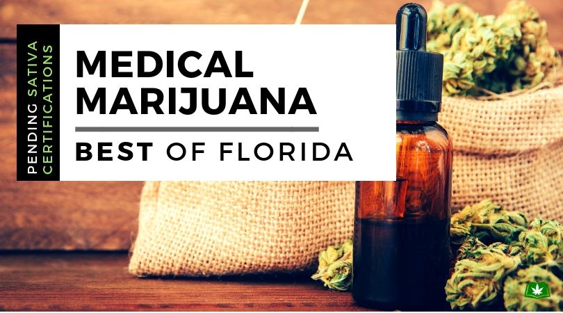 Top 5 Best Medical Marijuana Strains in Florida (Updated Daily)