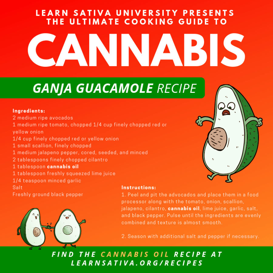 Edibles - Ganja Guac Marijuana Recipe