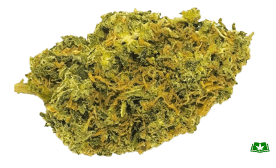 Cheese Strain (Buy Online) | Side Effects, Grow Tips & More