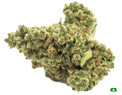 Original Glue Strain (Buy Online) | Side Effects, Grow Tips & More