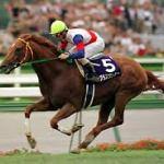 【2016年6月④】JRA競走馬歴代賞金ランキング!獲得賞金の多い馬は?第31位~第40位発表!