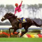 【2016年6月②】JRA競走馬歴代賞金ランキング!獲得賞金の多い馬は?第11位~第20位発表!