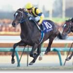 【2016年6月⑧】JRA競走馬歴代賞金ランキング!獲得賞金の多い馬は?第71位~第80位発表!