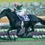 引退レースのパフォーマンスが一番凄かった馬
