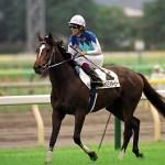 3歳で引退したG1馬で一番その後が見たいのはどの馬ですか?