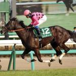 ディープ産駒最強牝馬ファンディーナが引退