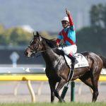 日本ダービー制覇が最後のGI勝利になった(なってる)馬