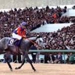 ハイセイコー、オグリの次に人気あった馬は何?